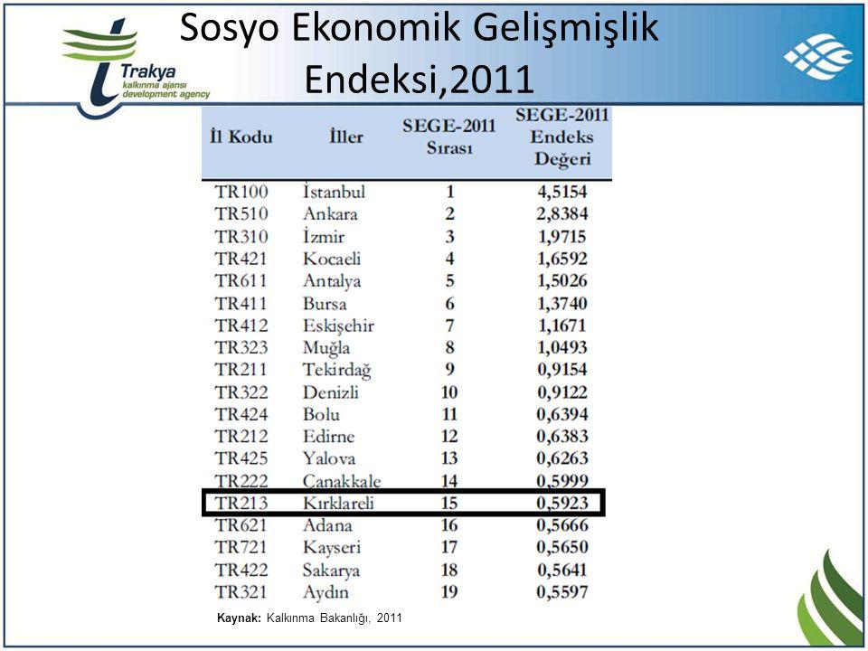 Sosyo Ekonomik Gelişmişlik Endeksi,2011