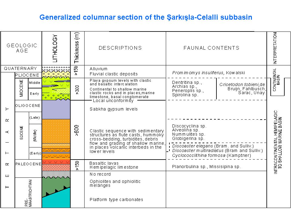 Generalized columnar section of the Şarkışla-Celalli subbasin