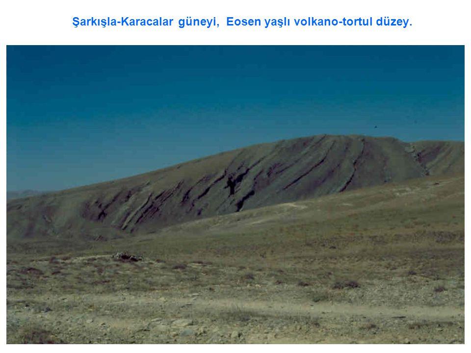 Şarkışla-Karacalar güneyi, Eosen yaşlı volkano-tortul düzey.