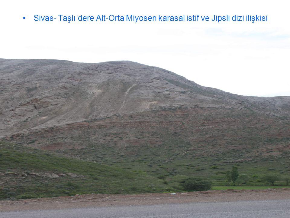 Sivas- Taşlı dere Alt-Orta Miyosen karasal istif ve Jipsli dizi ilişkisi