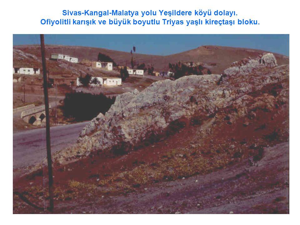 Sivas-Kangal-Malatya yolu Yeşildere köyü dolayı