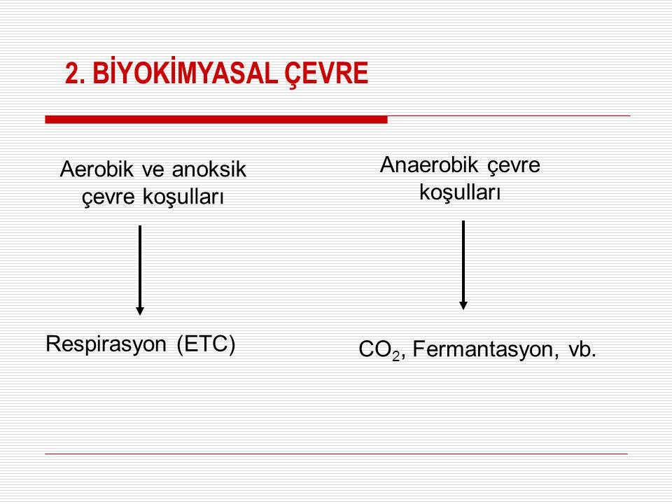 2. BİYOKİMYASAL ÇEVRE Anaerobik çevre koşulları