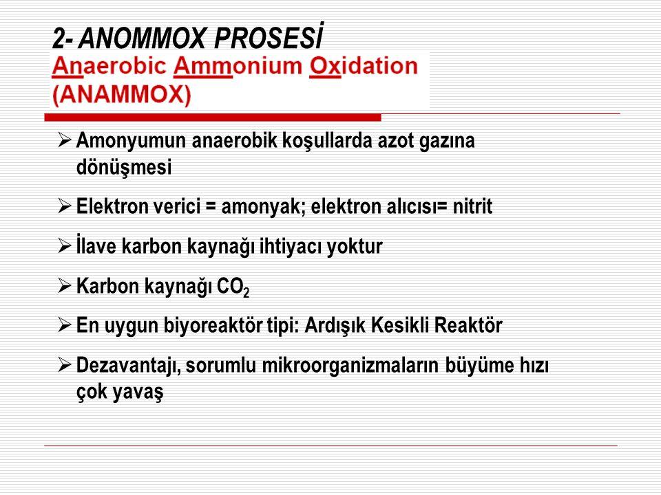 2- ANOMMOX PROSESİ Amonyumun anaerobik koşullarda azot gazına dönüşmesi. Elektron verici = amonyak; elektron alıcısı= nitrit.
