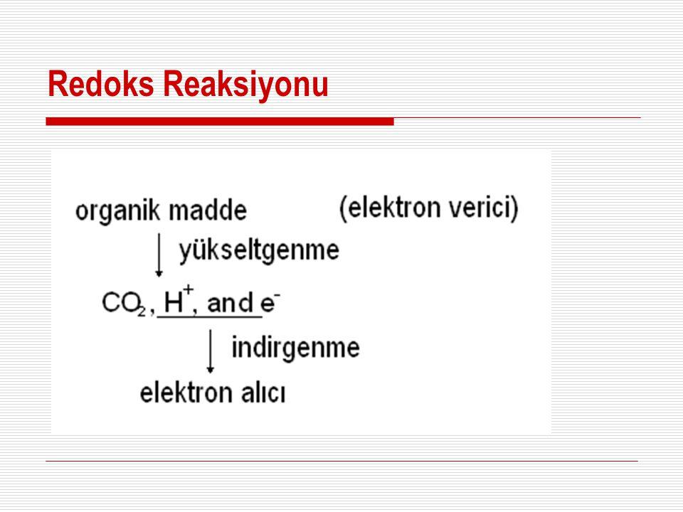 Redoks Reaksiyonu