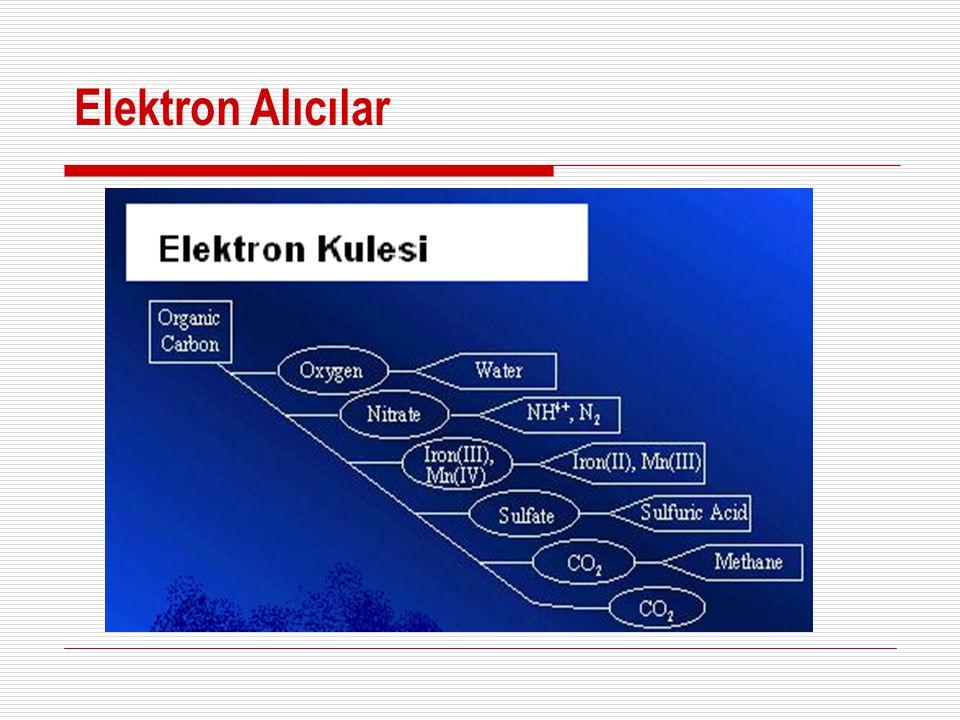 Elektron Alıcılar