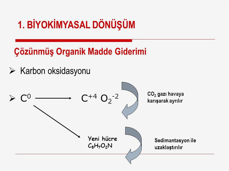 1. BİYOKİMYASAL DÖNÜŞÜM Çözünmüş Organik Madde Giderimi