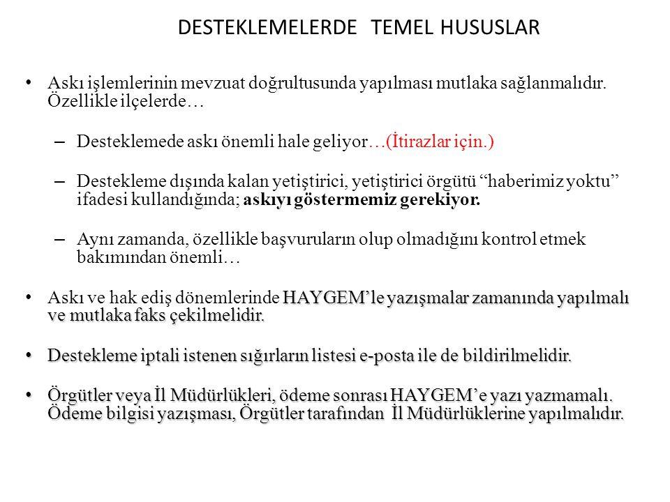DESTEKLEMELERDE TEMEL HUSUSLAR