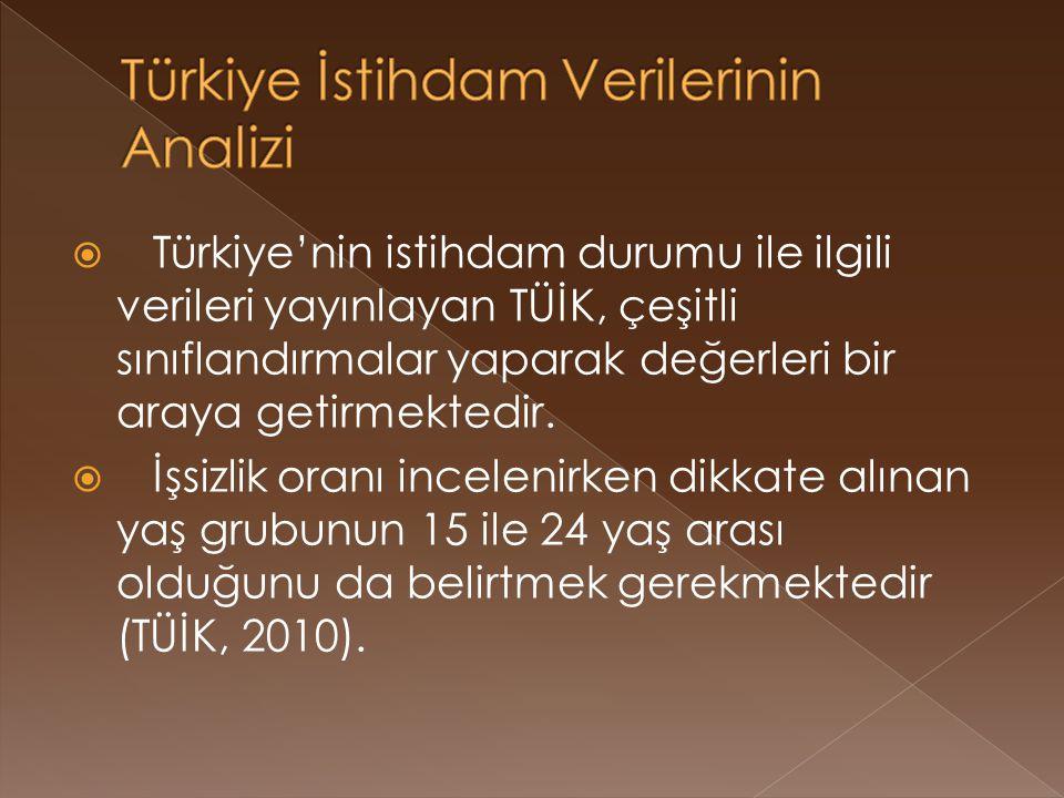 Türkiye İstihdam Verilerinin Analizi