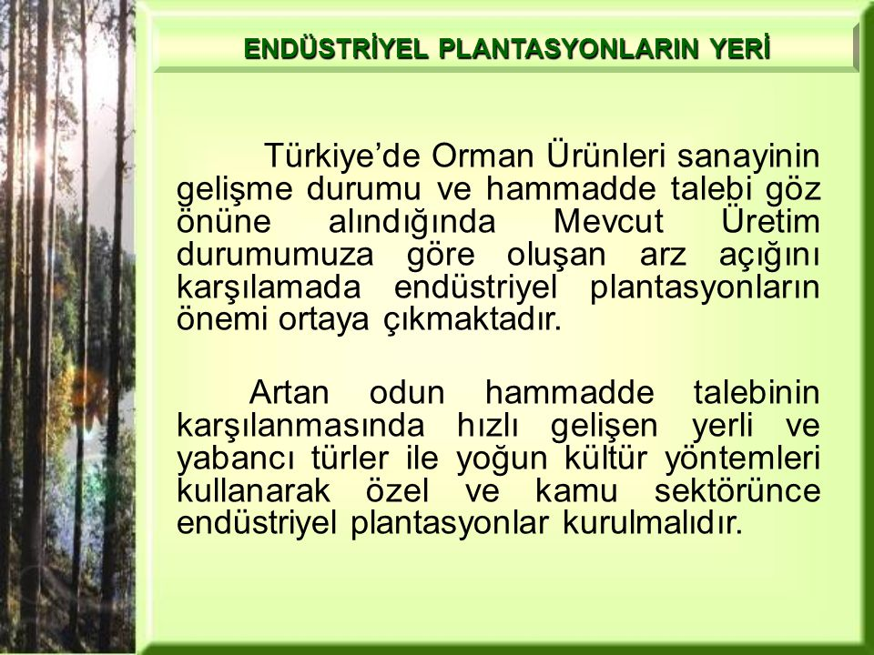 ENDÜSTRİYEL PLANTASYONLARIN YERİ