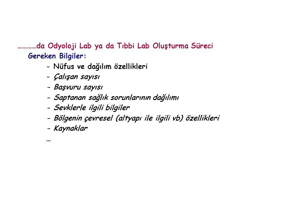 …………da Odyoloji Lab ya da Tıbbi Lab Oluşturma Süreci