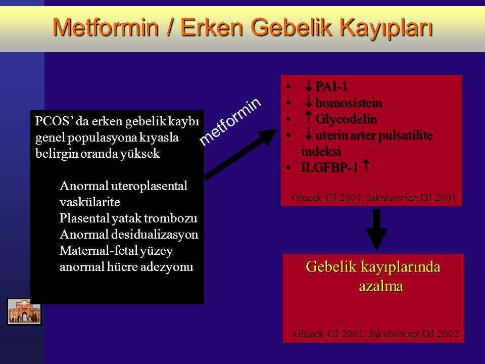 Metformin / Erken Gebelik Kayıpları