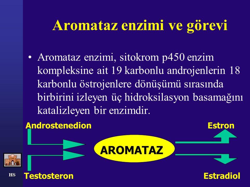 Aromataz enzimi ve görevi