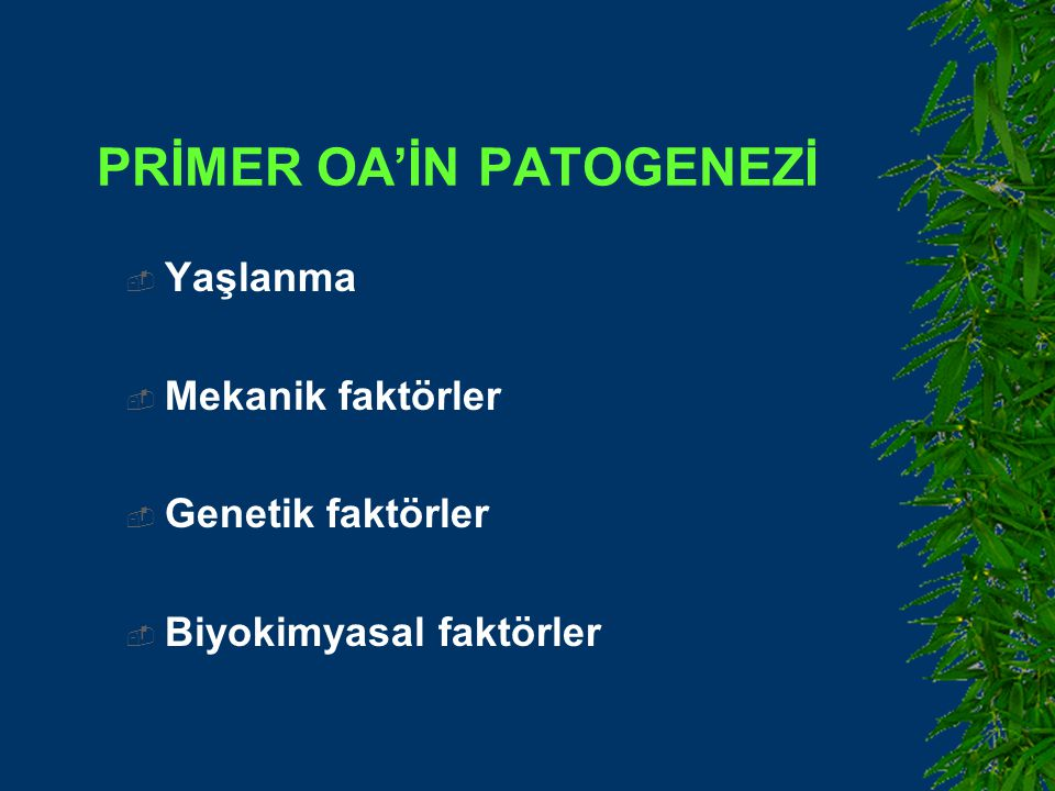 PRİMER OA'İN PATOGENEZİ