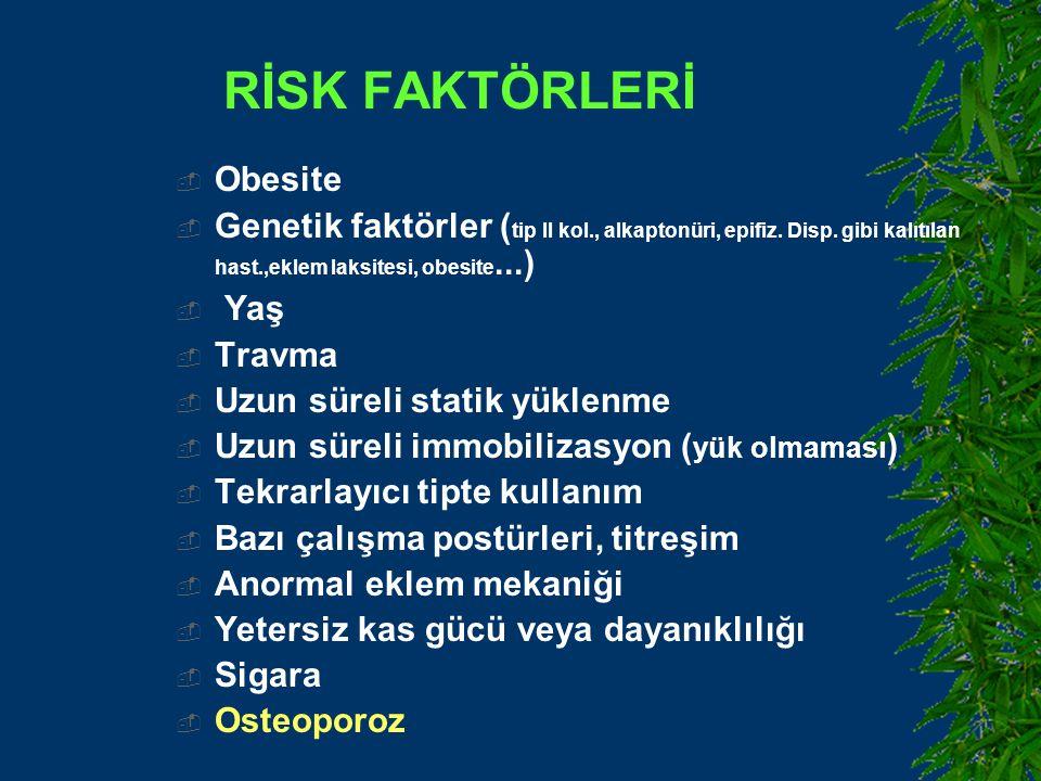 RİSK FAKTÖRLERİ Obesite