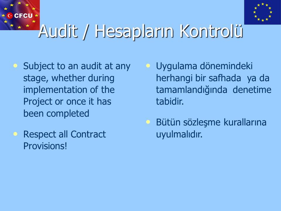 Audit / Hesapların Kontrolü