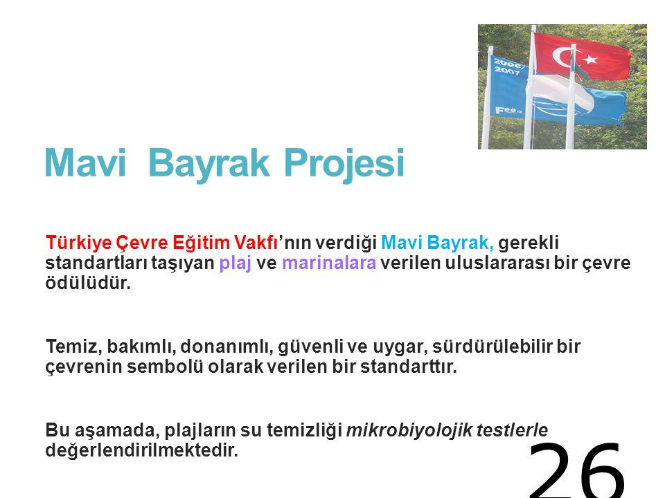 Mavi Bayrak Projesi
