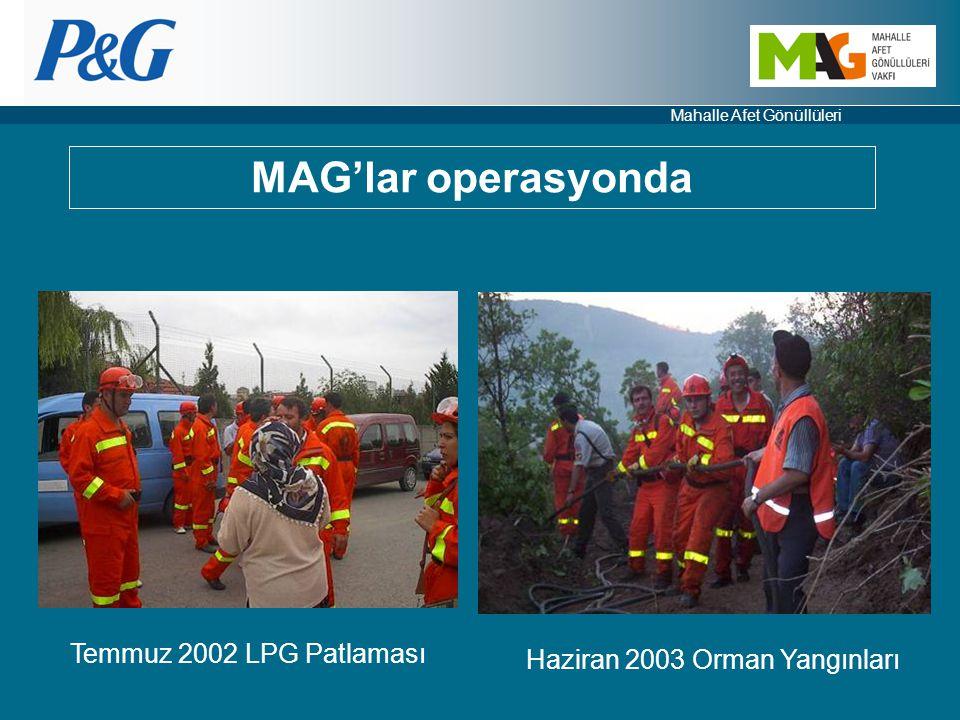 Haziran 2003 Orman Yangınları
