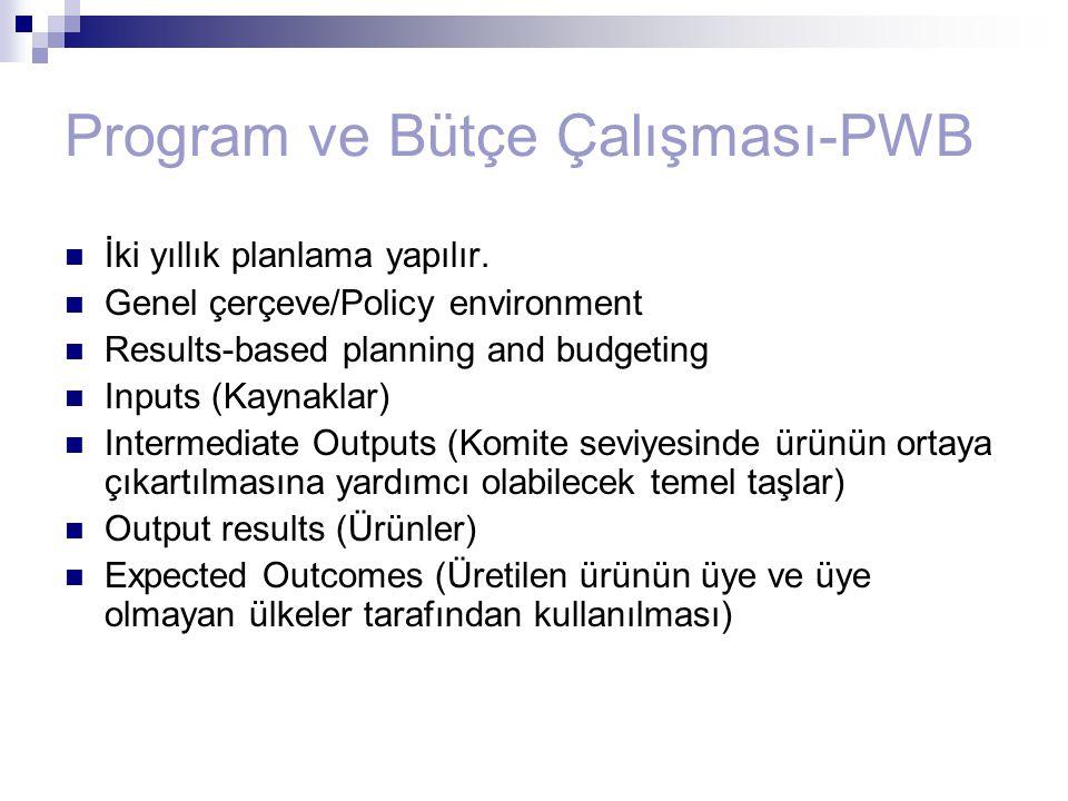 Program ve Bütçe Çalışması-PWB