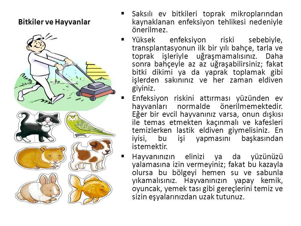 Bitkiler ve Hayvanlar Saksılı ev bitkileri toprak mikroplarından kaynaklanan enfeksiyon tehlikesi nedeniyle önerilmez.