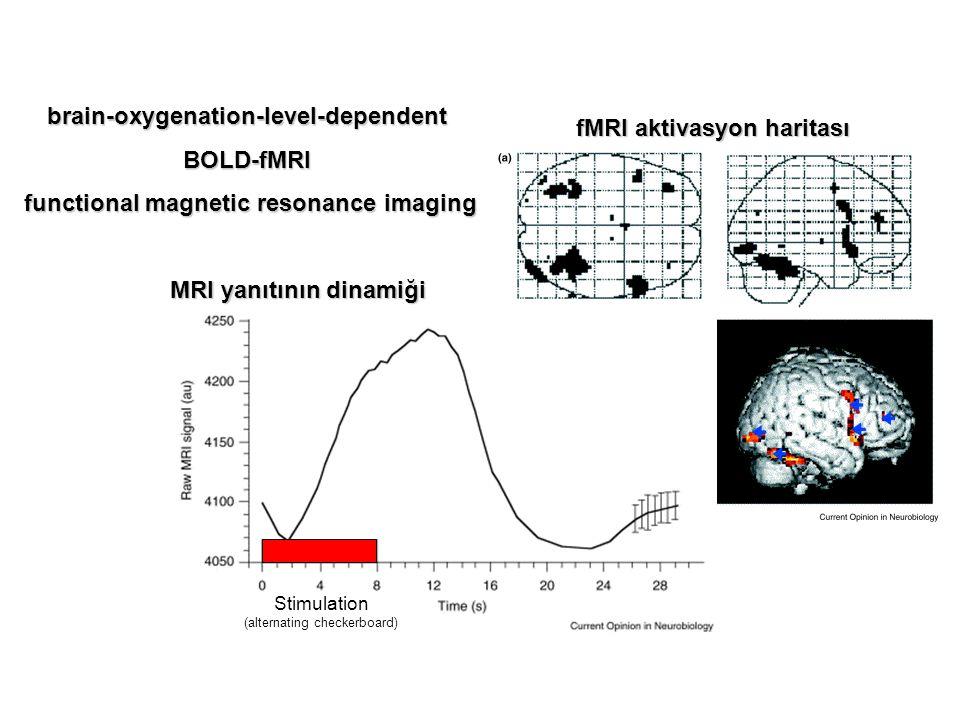 brain-oxygenation-level-dependent BOLD-fMRI
