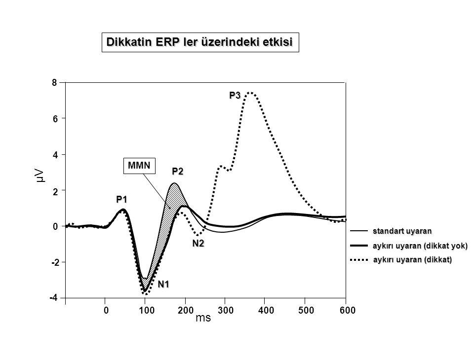 Dikkatin ERP ler üzerindeki etkisi