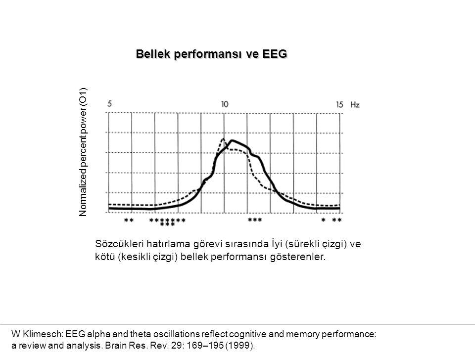Bellek performansı ve EEG