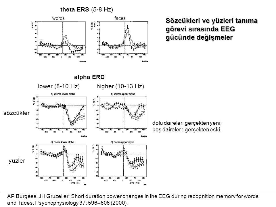 Sözcükleri ve yüzleri tanıma görevi sırasında EEG gücünde değişmeler