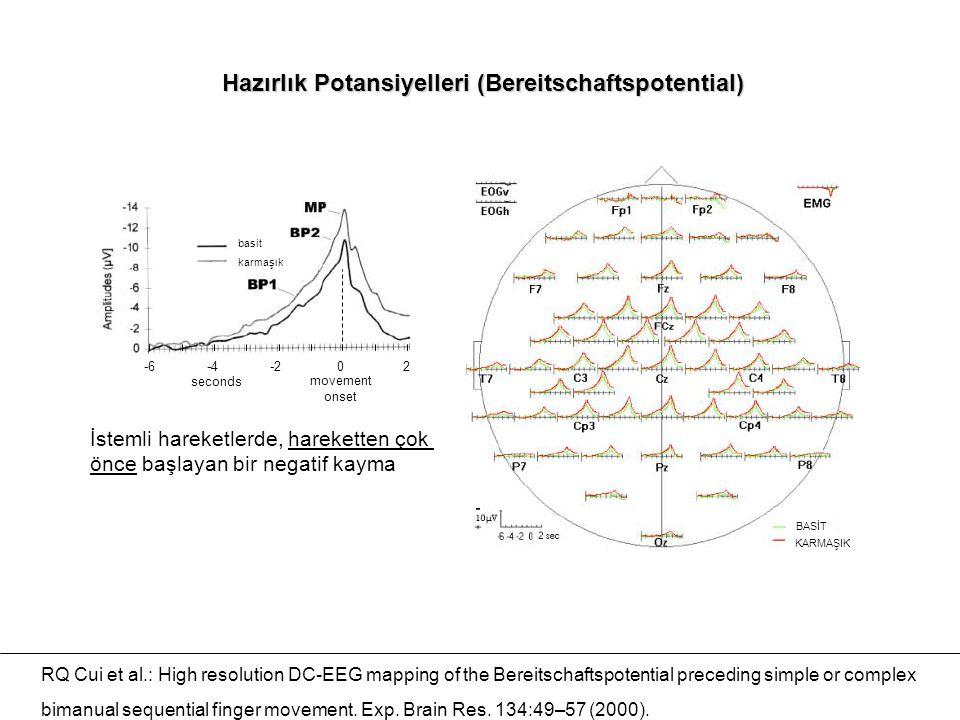 Hazırlık Potansiyelleri (Bereitschaftspotential)