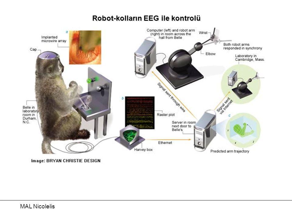 Robot-kolların EEG ile kontrolü