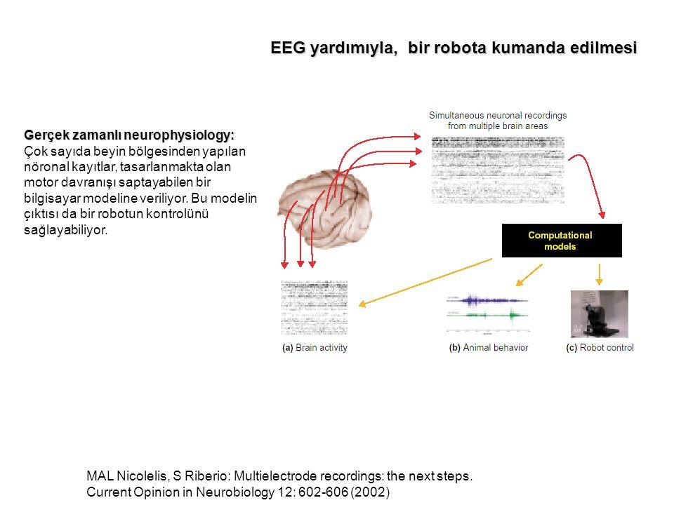EEG yardımıyla, bir robota kumanda edilmesi