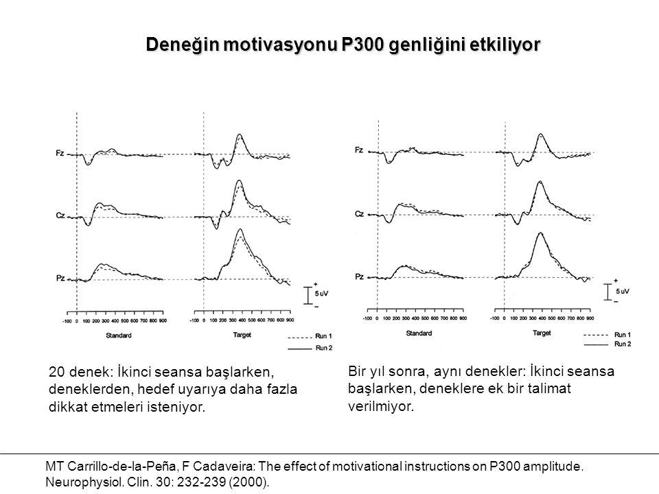 Deneğin motivasyonu P300 genliğini etkiliyor