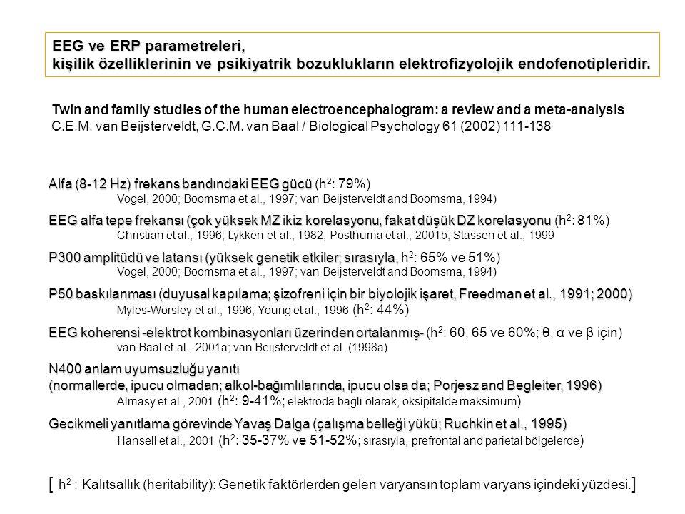 EEG ve ERP parametreleri,