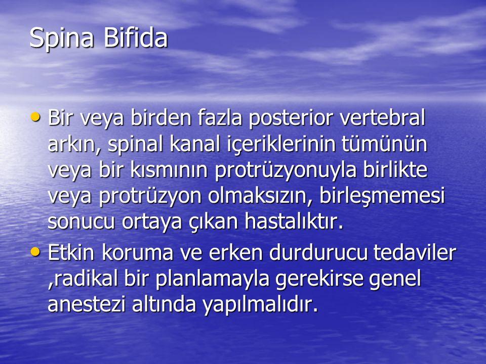 Spina Bifida
