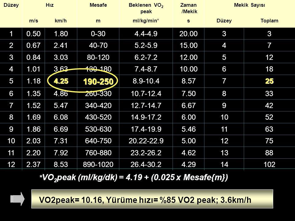 VO2peak= 10.16, Yürüme hızı= %85 VO2 peak; 3.6km/h