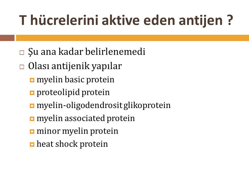T hücrelerini aktive eden antijen