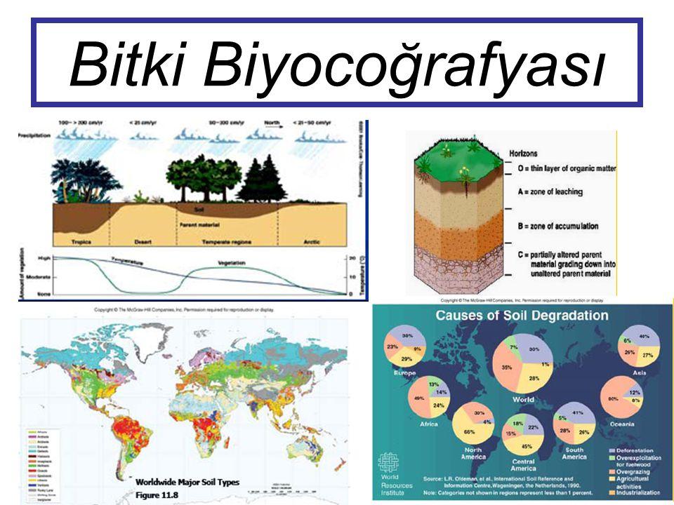 Bitki Biyocoğrafyası
