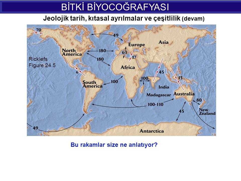 BİTKİ BİYOCOĞRAFYASI Jeolojik tarih, kıtasal ayrılmalar ve çeşitlilik (devam) Ricklefs. Figure 24.5.
