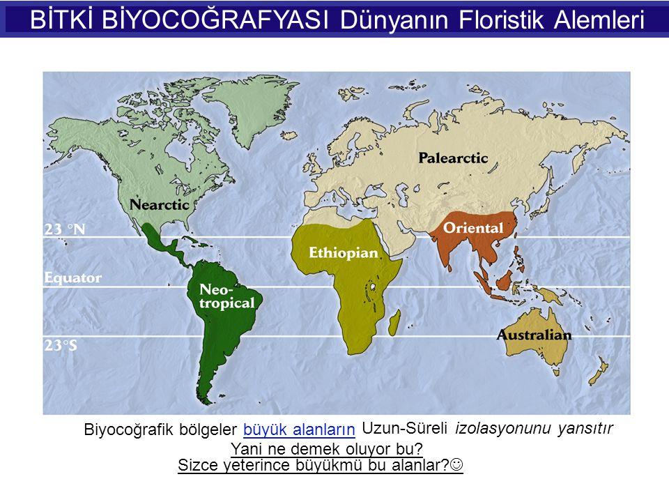 BİTKİ BİYOCOĞRAFYASI Dünyanın Floristik Alemleri
