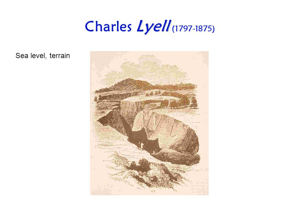 Charles Lyell ( ) Sea level, terrain