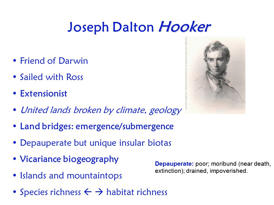 Joseph Dalton Hooker Friend of Darwin Sailed with Ross Extensionist