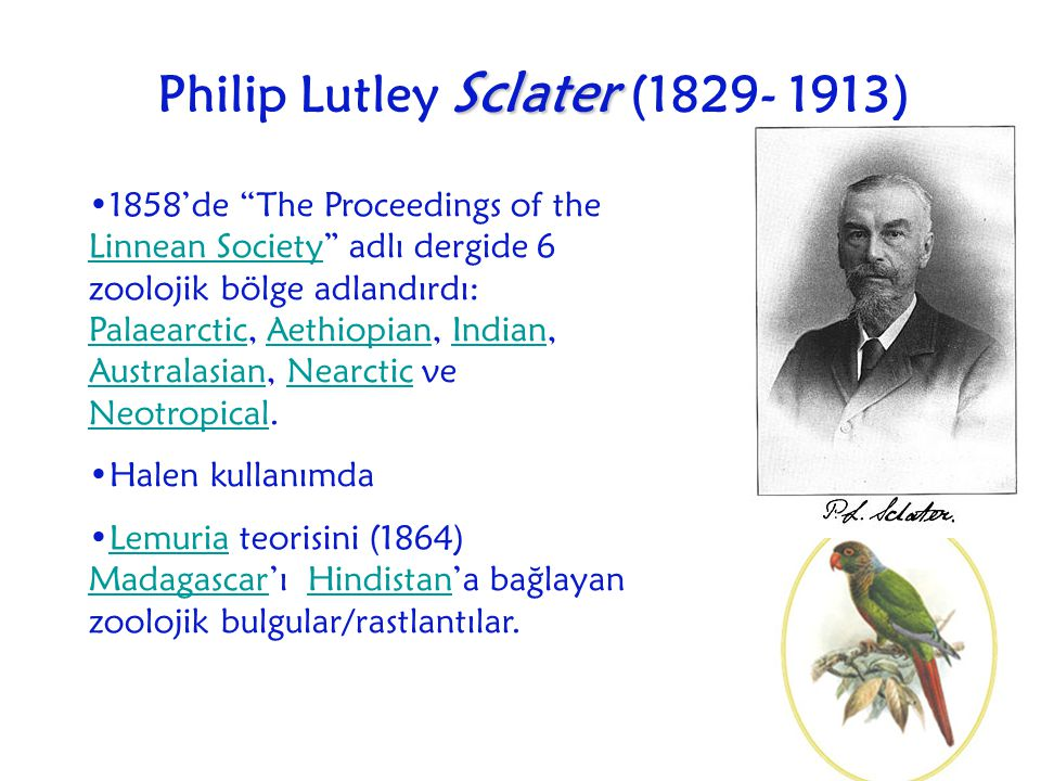 Philip Lutley Sclater (1829- 1913)