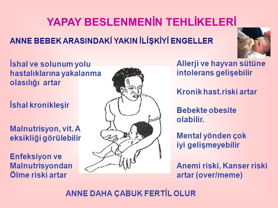ANNE DAHA ÇABUK FERTİL OLUR