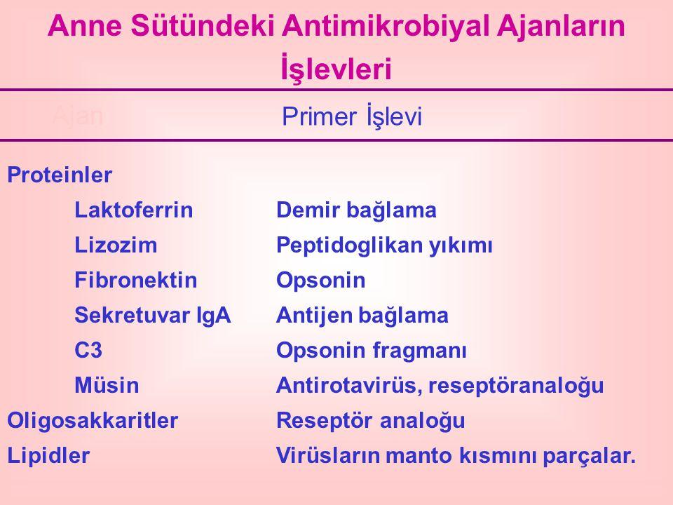Anne Sütündeki Antimikrobiyal Ajanların İşlevleri