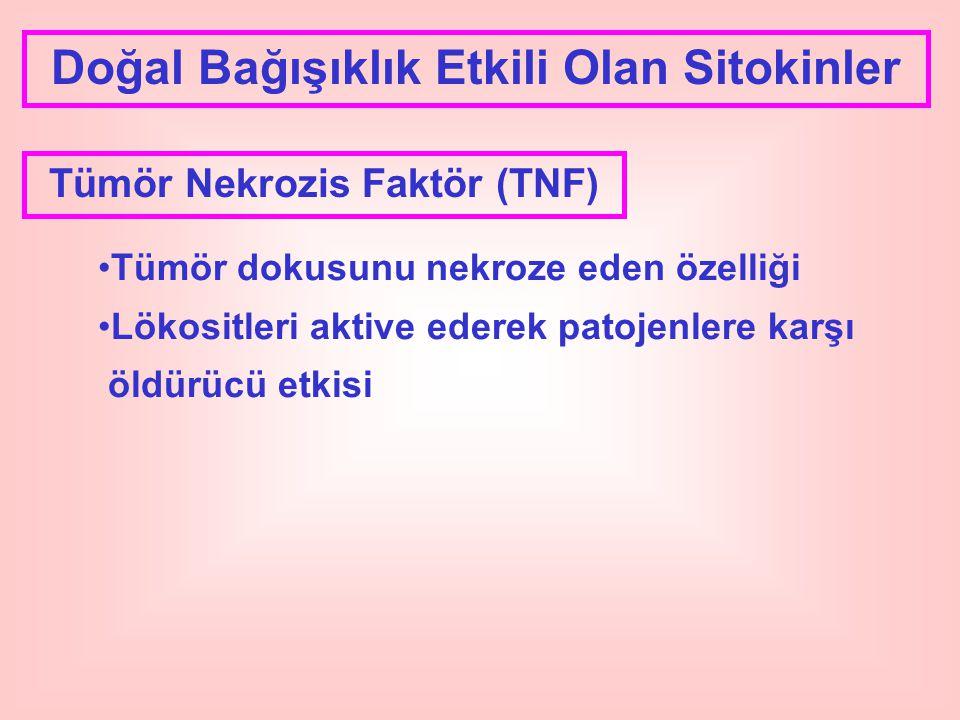 Doğal Bağışıklık Etkili Olan Sitokinler Tümör Nekrozis Faktör (TNF)