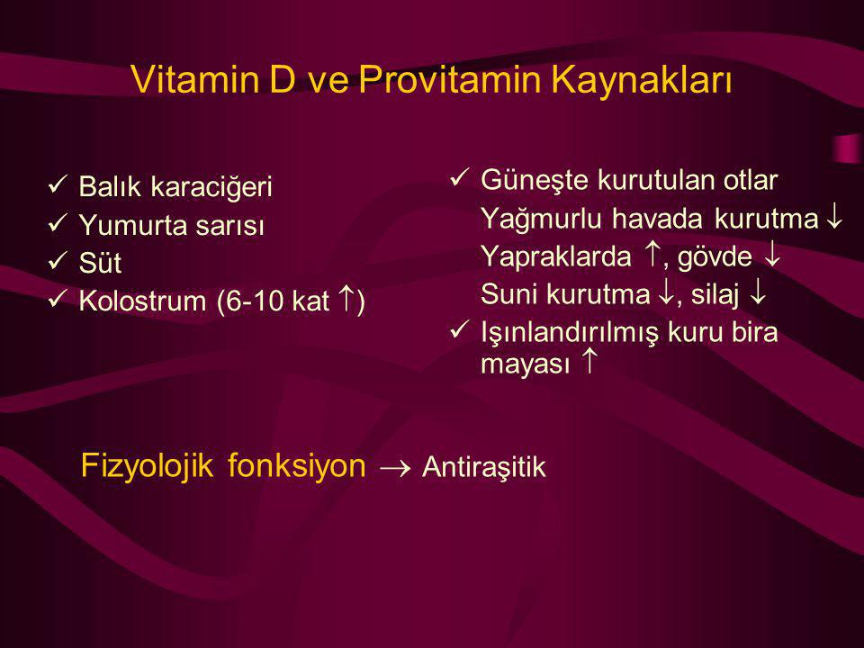 Vitamin D ve Provitamin Kaynakları