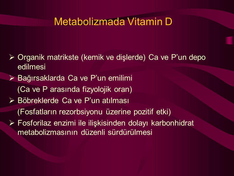 Metabolizmada Vitamin D