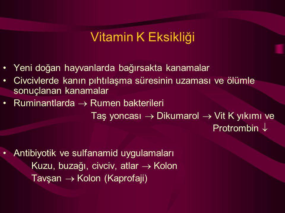 Vitamin K Eksikliği Yeni doğan hayvanlarda bağırsakta kanamalar