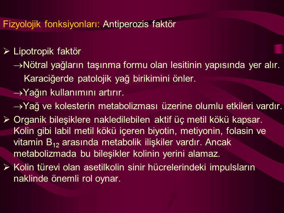 Fizyolojik fonksiyonları: Antiperozis faktör