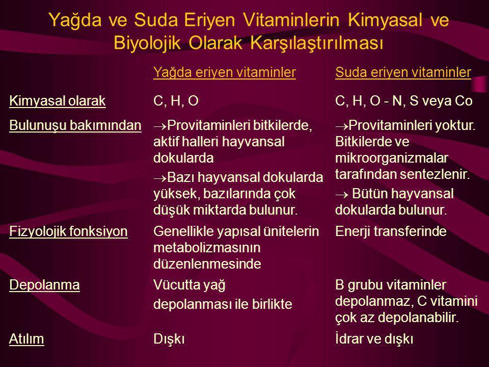 Yağda ve Suda Eriyen Vitaminlerin Kimyasal ve Biyolojik Olarak Karşılaştırılması