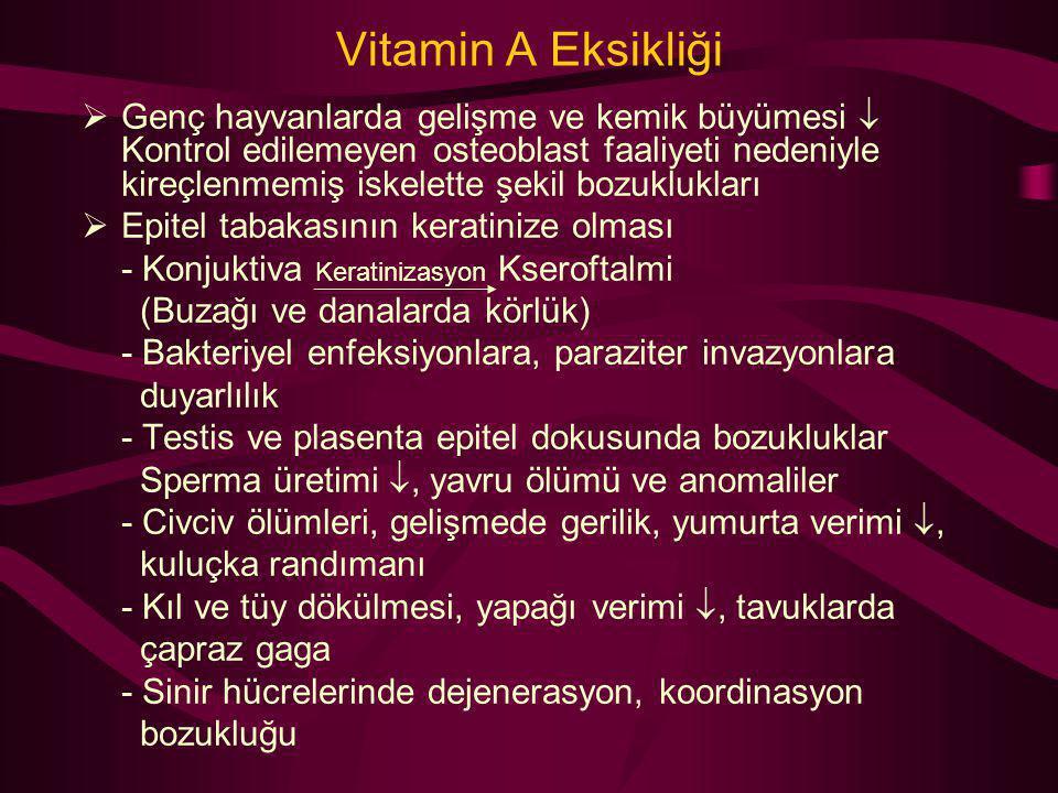 Vitamin A Eksikliği